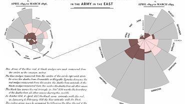 Wykres umieralności brytyjskich żołnierzy stworzony przez Florence Nightingale, statystyczkę i prekursorkę pielęgniarstwa. Opublikowała go w styczniu 1859 r.