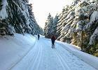 Trasy biegowe w Polsce i w Czechach