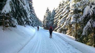 Trasy biegowe w okolicy Chaty Paprsek / Traseo.pl / januszek_44