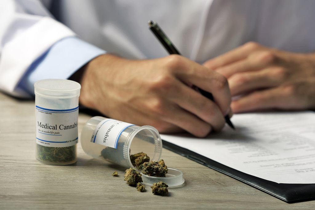 Medyczna marihuana, zdjęcie ilustracyjne