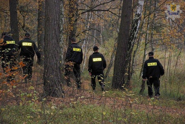 Policjanci podczas poszukiwań - zdjęcie poglądowe