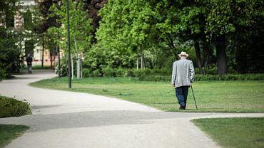 Od kiedy w życie wejdą emerytury stażowe? (zdjęcie ilustracyjne)