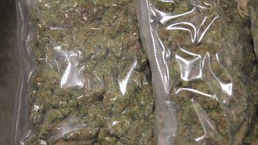 Zatrzymanie podejrzanych w sprawie marihuany