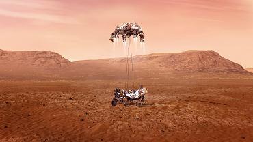 """Łazik Perserverence ląduje na Marsie. Oglądaj na żywo """"7 minut grozy"""" [TRANSMISJA]"""
