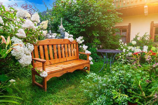 Jaka ławka ogrodowa sprawdzi się najlepiej? Metalowa czy drewniana?