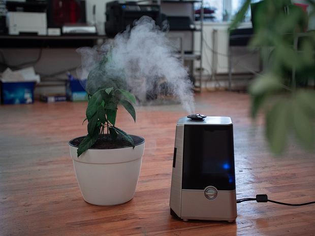 Nawilżacz powietrza: jak działa i czy warto go mieć? Poznaj TOP sprzęty do pomieszczeń