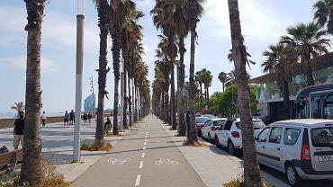 Barcelona. Promenada nad Morzem Śródziemnym w dzielnicy La Barceloneta