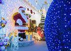 Czas na zakupowy szał. Gazetki z ofertą świąteczną pojawiły się jeszcze przed Wszystkimi Świętymi