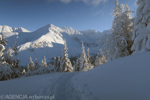 Zdjęcie numer 45 w galerii - Słońce, śnieg i szczyty. Piękna pogoda w Tatrach, zachwycające widoki