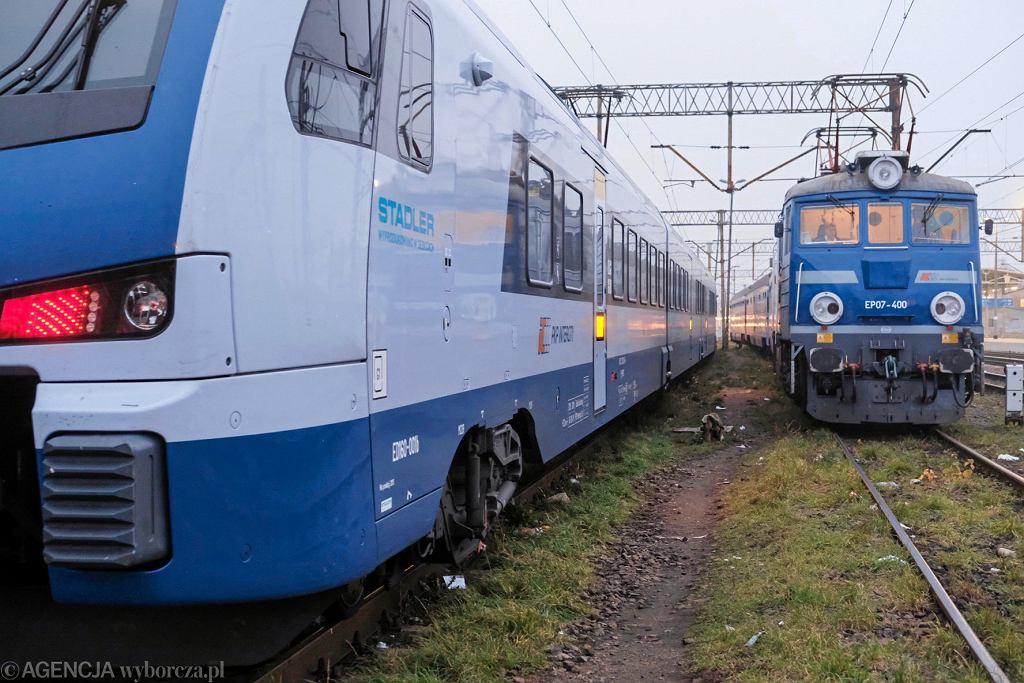Utrudnienia na trasie Poznań-Szczecin. Pociąg potrącił jelenia (zdjęcie ilustracyjne)