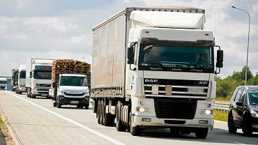 Samochody  ciężarowe na autostradzie A1 w okolicach Łodzi