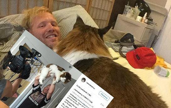 Zdjęcie numer 1 w galerii - Tysiące ludzi obserwują tego kota.