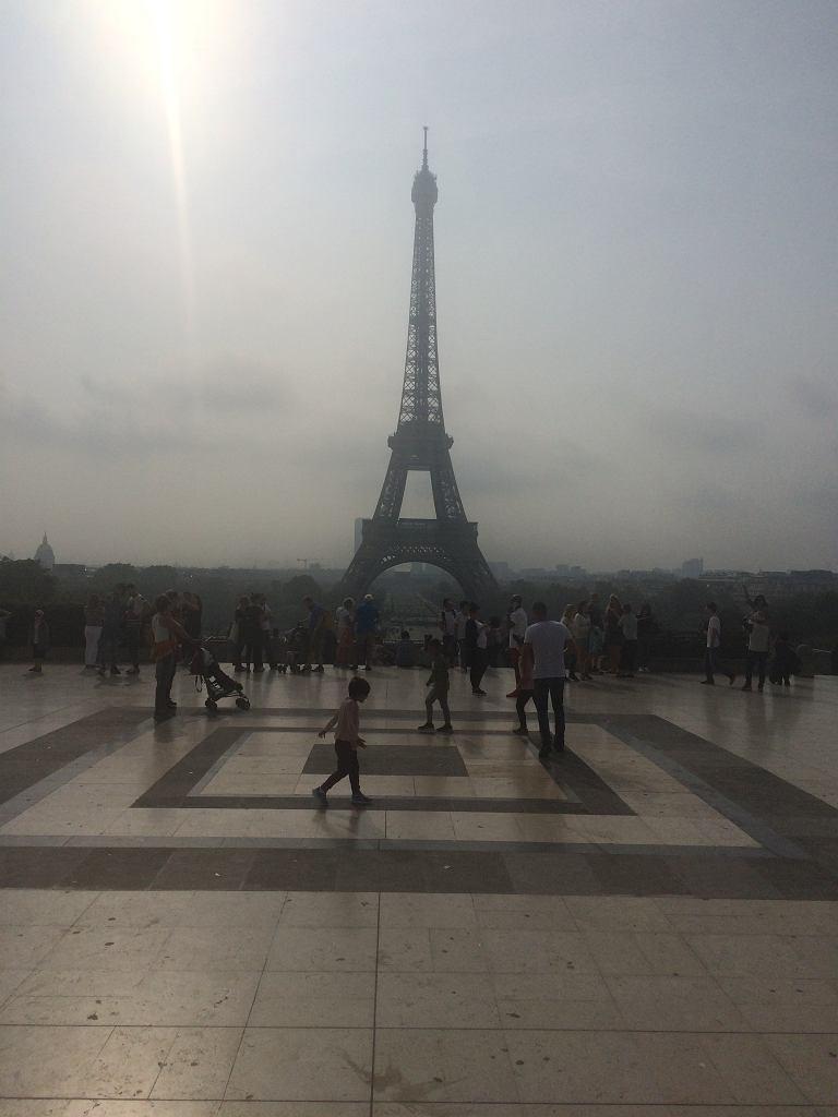 Wieża Eiffle'a w Paryżu