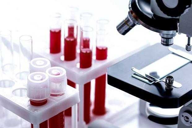 ARhD+, czyli jak interpretować takie oznaczenie grupy krwi?