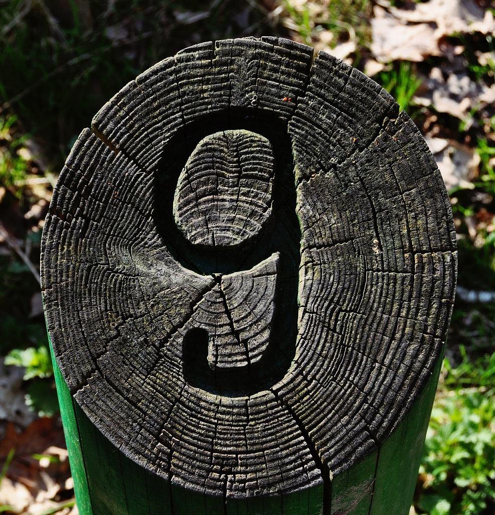 Numerologia 9. Zdjęcie ilustracyjne