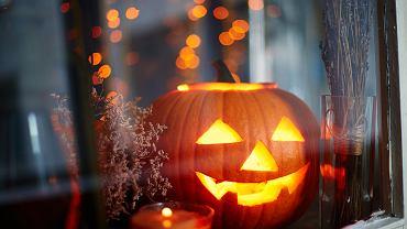 Jak wydrążyć dynię na Halloween? Prosty i szybki trik