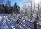Bieganie zimą ma swoje uroki! Spójrzcie tylko na TE zdjęcia