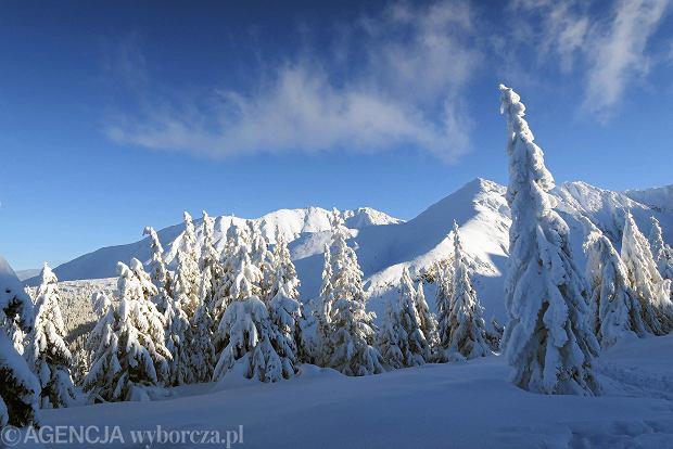 Zdjęcie numer 44 w galerii - Słońce, śnieg i szczyty. Piękna pogoda w Tatrach, zachwycające widoki