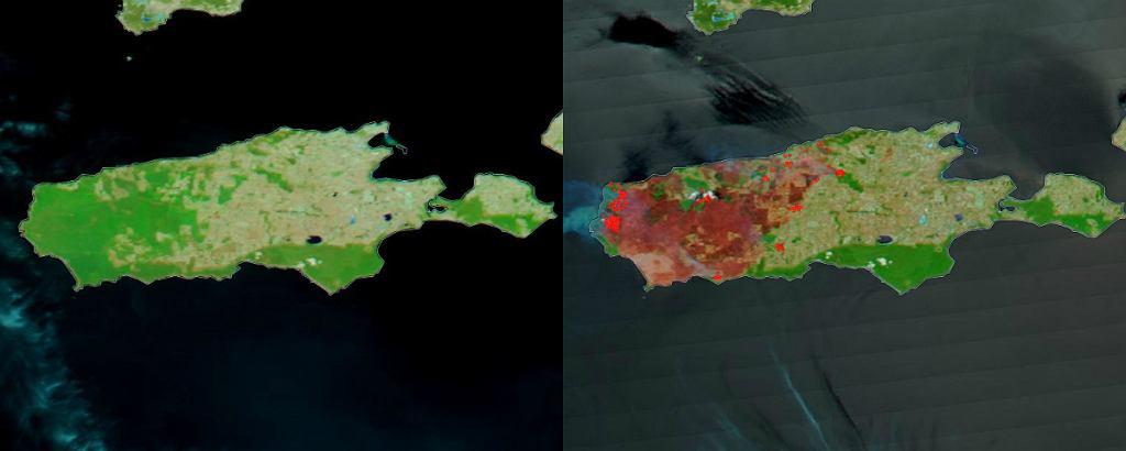 Wyspa Kangura przed pożarem i po pożarze buszu