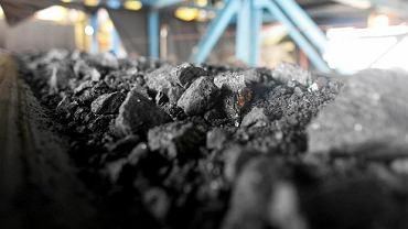 Węgiel kamienny (zdjęcie ilustracyjne)