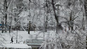 Park Helenów w Łodzi. Zima 2020/2021