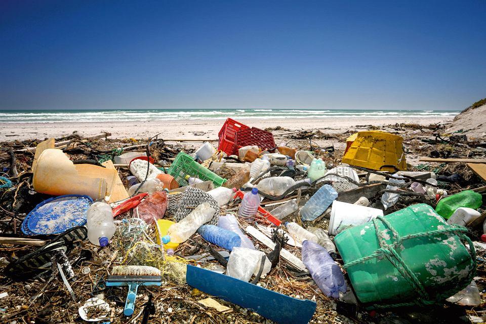 Morze wyrzuca codziennie tony śmieci