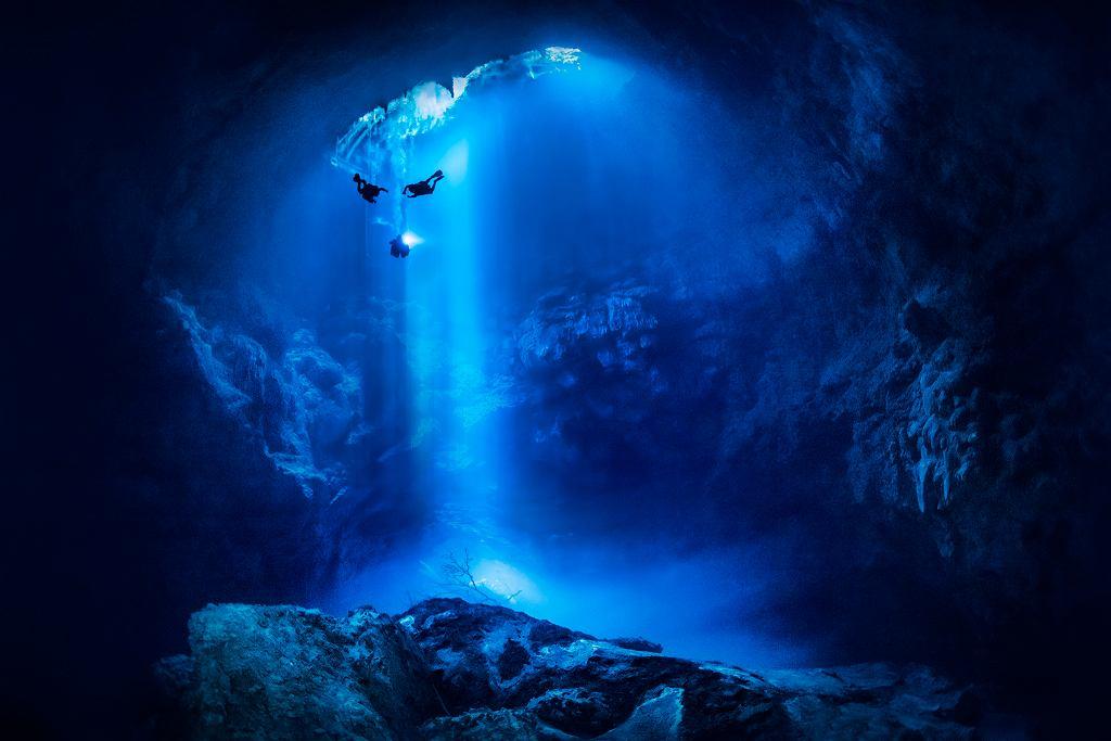 Podwodny świat Ireny Stangierskiej
