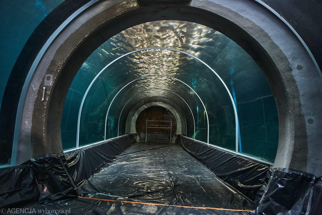 Orientarium w Łodzi. Podwodny tunel