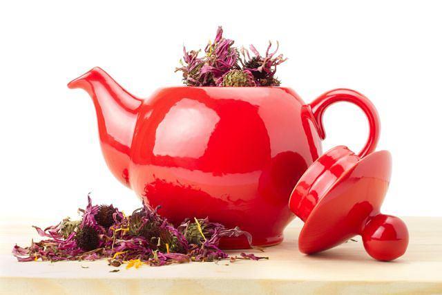 Ciepła herbatka, niekoniecznie na bazie ziół, zawsze działa pobudzająco na układ odporności. Jeśli przygotujesz napar z jeżówką, zapewne twoje szanse na uniknięcie infekcji rosną