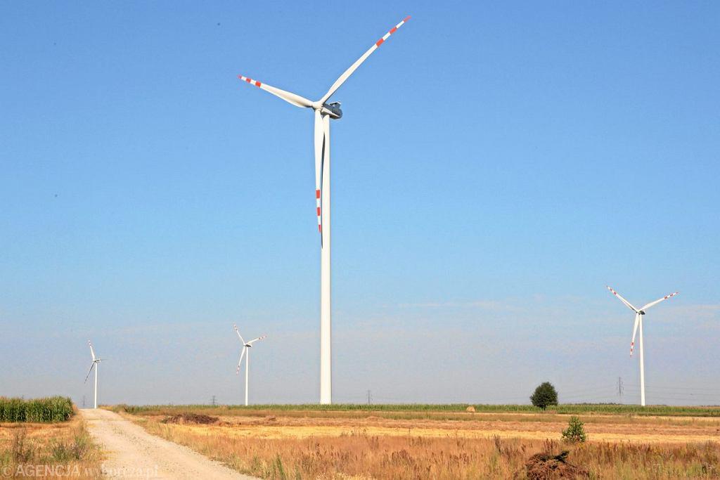 Wiatraki prądotwórcze na polach koło miejscowości Bartodzieje.