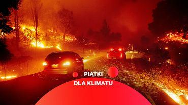 Kryzys klimatyczny przyczynia się do tragicznych pożarów w Kalifornii