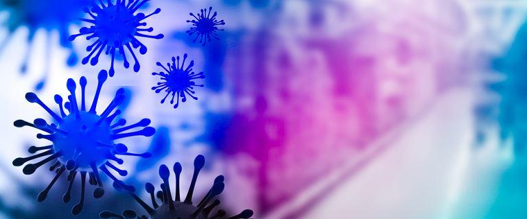 Koronawirus może zmusić układ odpornościowy do atakowania własnego organizmu