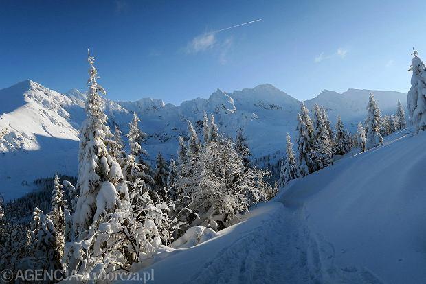 Zdjęcie numer 43 w galerii - Słońce, śnieg i szczyty. Piękna pogoda w Tatrach, zachwycające widoki