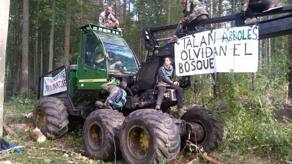 Blokada wycinki Puszczy Białowieskiej