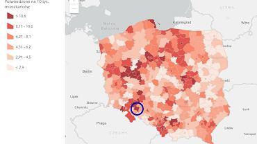 Zrzut ekranu z rządowej strony z raportami dotyczącymi zakażeń koronawirusem w Polsce