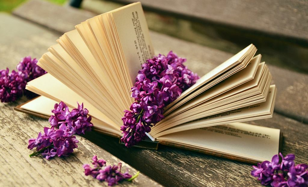 Książka (fot. pixabay CC0)