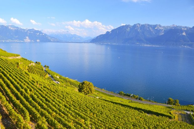Jezioro Genewskie/ Fot. Shutterstock