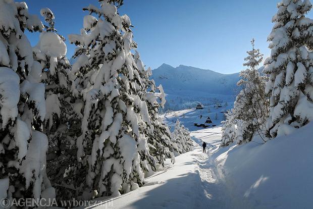 Zdjęcie numer 42 w galerii - Słońce, śnieg i szczyty. Piękna pogoda w Tatrach, zachwycające widoki