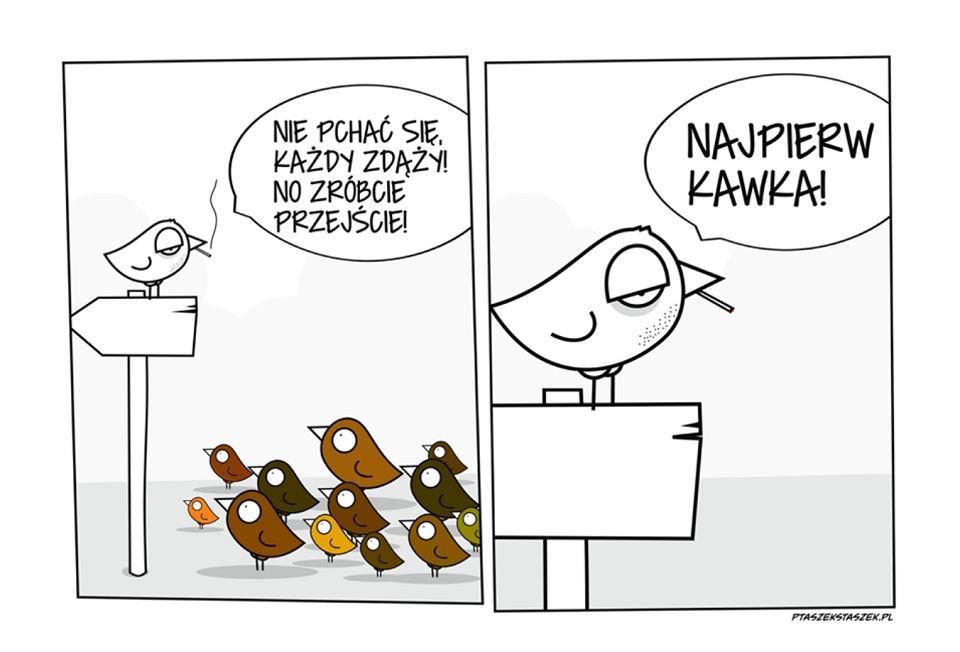 Ptaszek Staszek.