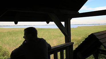 Punkt widokowy na ptasi rezerwat nad jeziorem Łuknajno k. Mikołajek. O zagrożeniu dla tego miejsca przeciwnicy S16 też wspominają