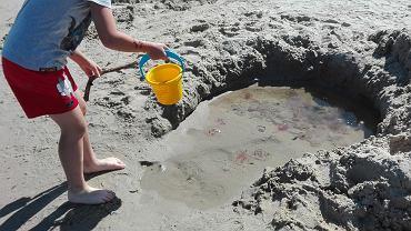 Turyści łapią meduzy na plaży w Krynicy Morskiej