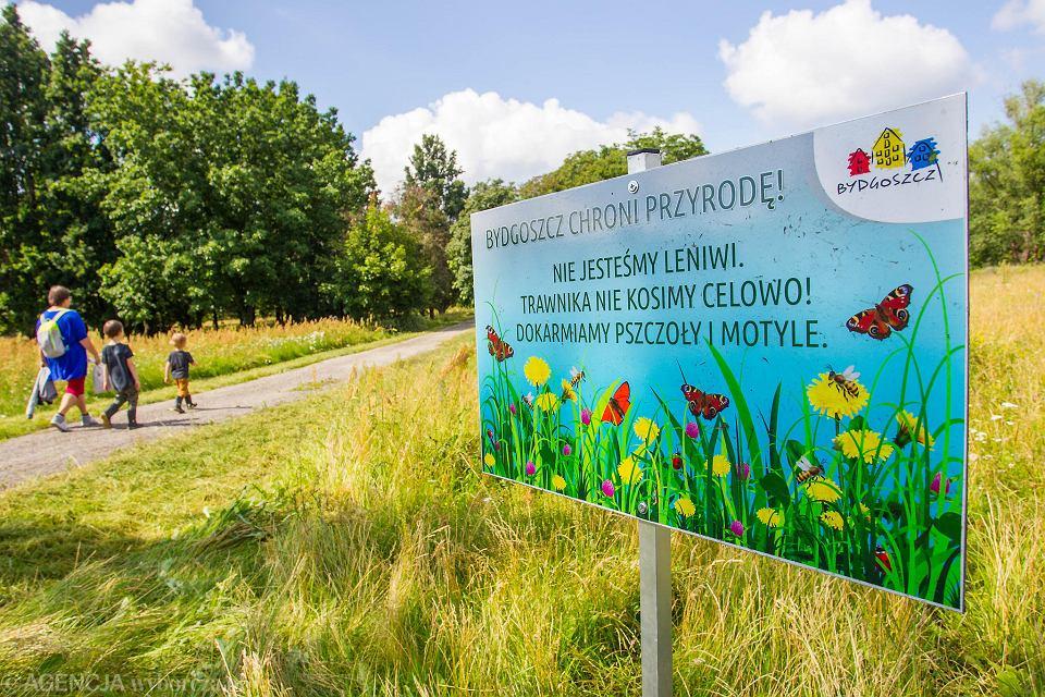 Park Centralny w Bydgoszczy