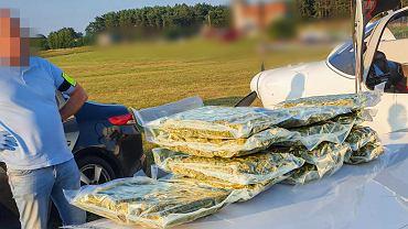 Zielona Góra. Policja udaremniła przemyt 73 kg marihuany
