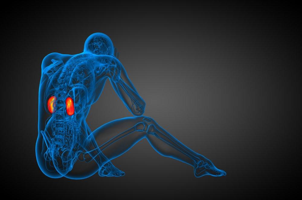 Angiografia nerkowa - co to za badanie?