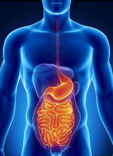 Jednym z częściej zlecanych badań układu pokarmowego jest USG - ultrasonografia