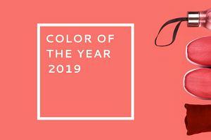 Wybrano kolor roku 2019! Zobacz ubrania sportowe w odcieniu Living Coral
