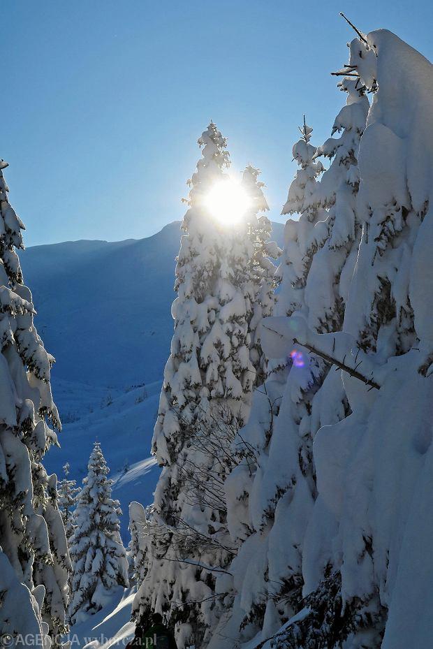 Zdjęcie numer 41 w galerii - Słońce, śnieg i szczyty. Piękna pogoda w Tatrach, zachwycające widoki