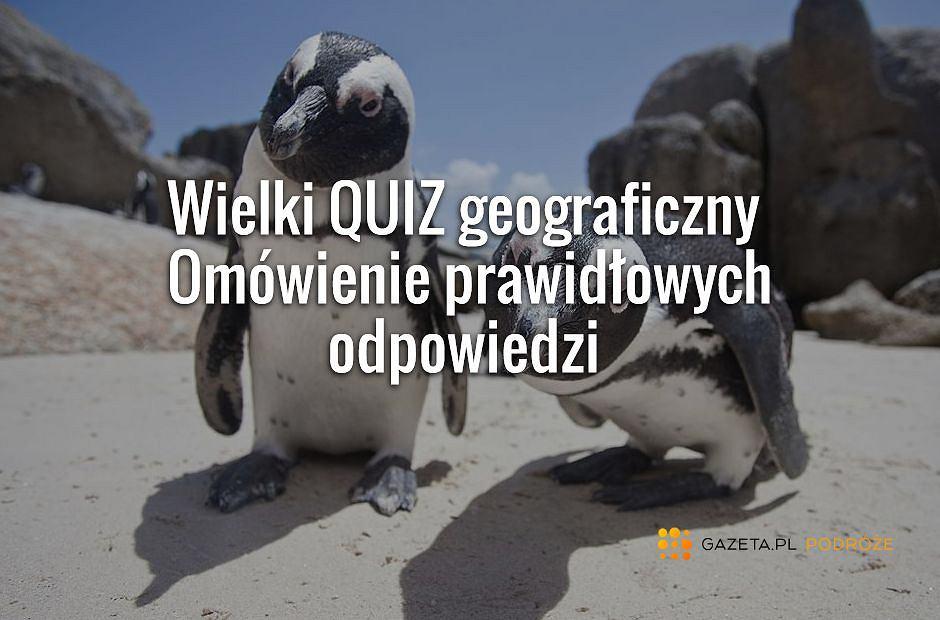 fot. Shutterstock, kolaż Gazeta.pl