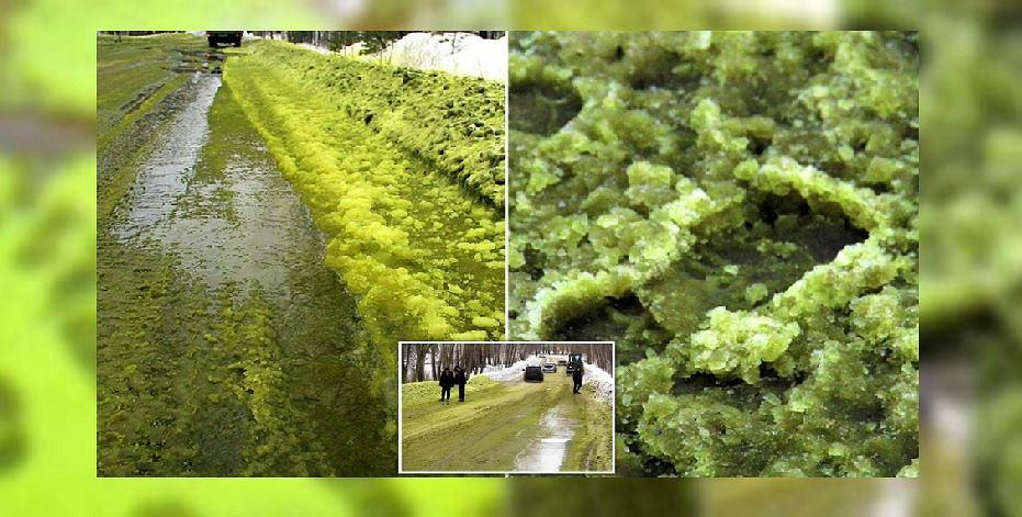 Zielony śnieg w miejscowości Pierwouralsk w Rosji.