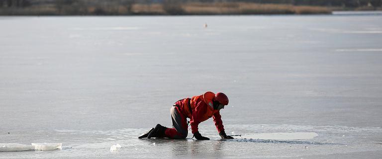 Poznań. Pies czuwał na zamarzniętym stawie. Z wody wyłowiono ciało
